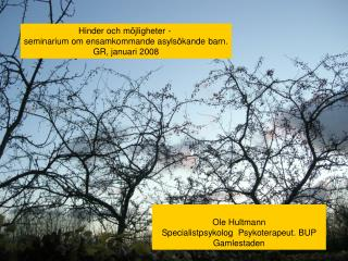 Hinder och möjligheter -  seminarium om ensamkommande asylsökande barn. GR, januari 2008