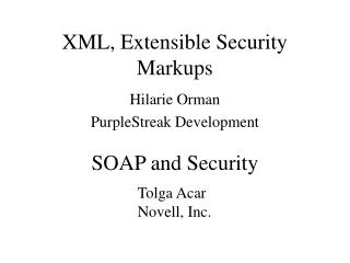 XML, Extensible Security Markups