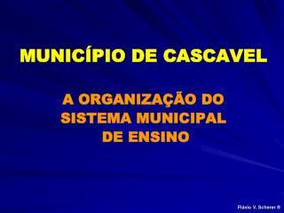 MUNIC PIO DE CASCAVEL  A ORGANIZA  O DO SISTEMA MUNICIPAL  DE ENSINO