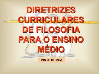 DIRETRIZES CURRICULARES   DE FILOSOFIA PARA O ENSINO M DIO