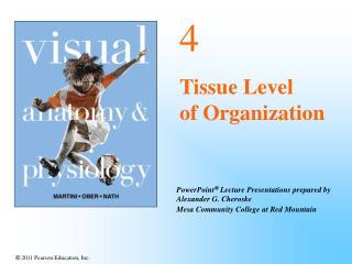 4 Tissue Level    of Organization