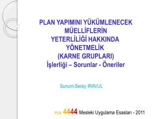 PLN  4 4 4 4 Mesleki Uygulama Esasları - 2011