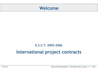 International project contracts