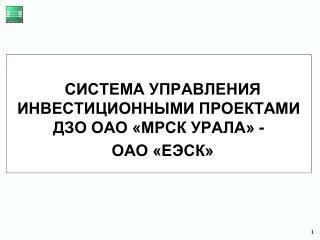 СИСТЕМА УПРАВЛЕНИЯ ИНВЕСТИЦИОННЫМИ ПРОЕКТАМИ ДЗО ОАО «МРСК УРАЛА» -  ОАО «ЕЭСК»