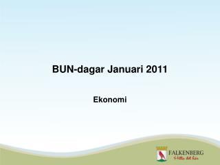 BUN-dagar Januari 2011
