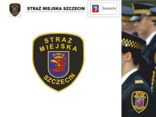 Straż Miejska Sprawozdanie 2013