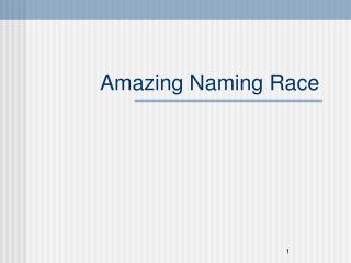 Amazing Naming Race