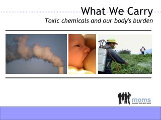 What We Carry Toxic chemicals and our body's burden