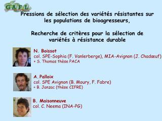 Palloix col. SPE Avignon (B. Moury, F. Fabre) + B. Janzac (th�se CIFRE)