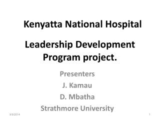 Leadership Development Program project.