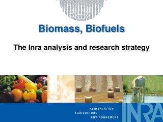 Biomass, Biofuels The Inra analysis and research strategy
