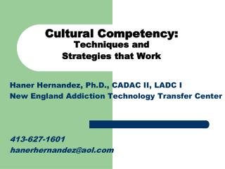 Cultural Competency:  Techniques and  Strategies that Work