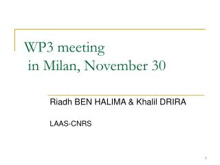 WP3 meeting   in Milan, November 30