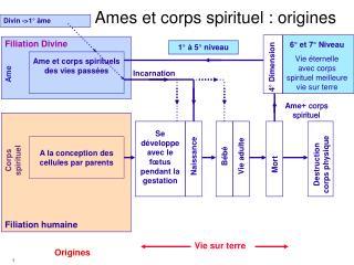 Ames et corps spirituel : origines