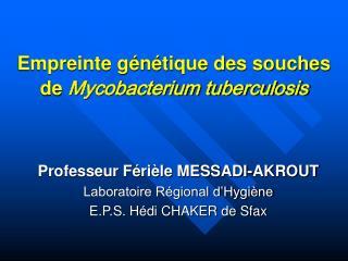 Empreinte génétique des souches de  Mycobacterium tuberculosis