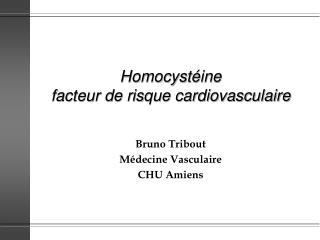 Homocystéine  facteur de risque cardiovasculaire