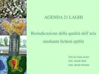 AGENDA 21 LAGHI  Bioindicazione della qualità dell'aria mediante licheni epifiti