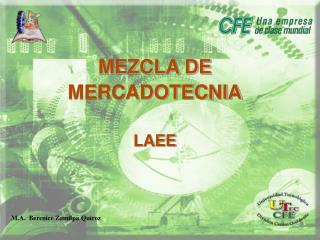 MEZCLA DE MERCADOTECNIA LAEE