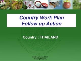 Country Work Plan  Follow  up Action