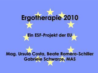 Ergotherapie 2010