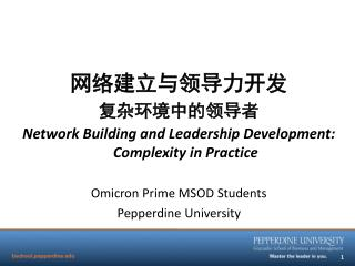 网络建立与领导力开发 复杂环境中的领导者 Network Building and Leadership Development: Complexity in Practice
