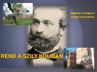 Rend a Szily  Koliban