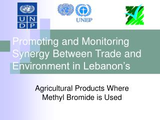 Promoting and Monitoring Synergy Between Trade and Environment in Lebanon's