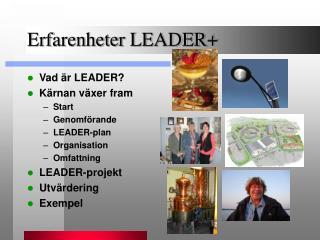Erfarenheter LEADER+