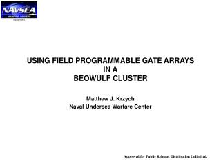 USING FIELD PROGRAMMABLE GATE ARRAYS IN A BEOWULF CLUSTER