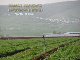 RAMAT  issachar landscape road