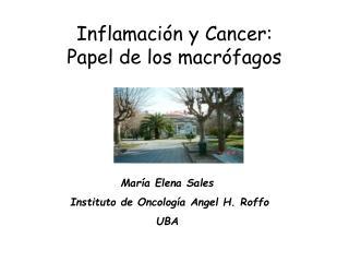 Inflamaci ón y  Cancer: Papel de los macrófagos