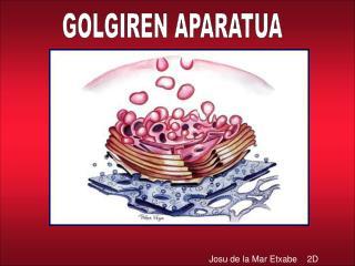 GOLGIREN APARATUA