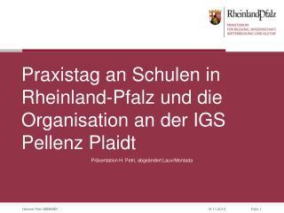 Praxistag an Schulen in Rheinland-Pfalz und die Organisation an der IGS Pellenz Plaidt