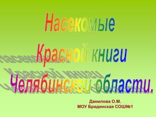 Данилова О.М.  МОУ Брединская СОШ№1
