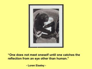 """One does not meet oneself until one catches the reflection from an eye other than human."""