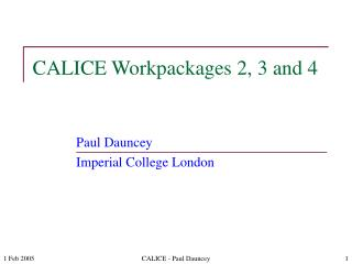 CALICE Workpackages 2, 3 and 4