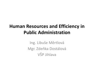Human  Resources and Efficiency in Public Administration