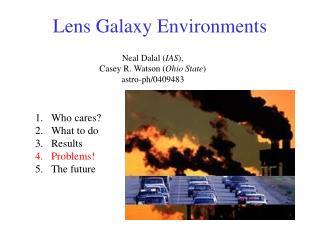 Lens Galaxy Environments