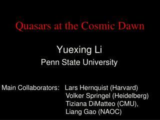 Quasars at the Cosmic Dawn