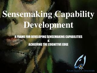 Sensemaking Capability Development