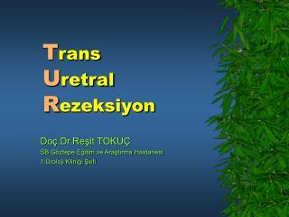 Trans Uretral Rezeksiyon