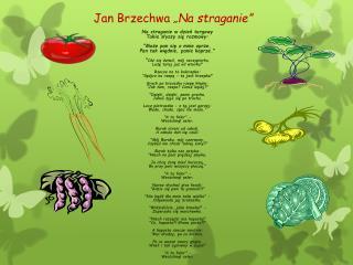 """Jan Brzechwa  """"Na straganie"""""""