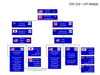 CTU 172.2.4 5 Sqn ( 1 P-3K2) SQNLDR  WHITESIDE