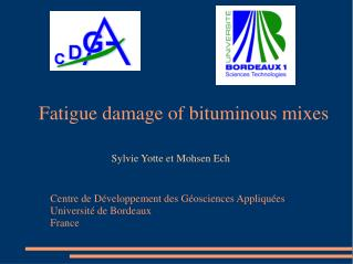 Fatigue damage of bituminous mixes