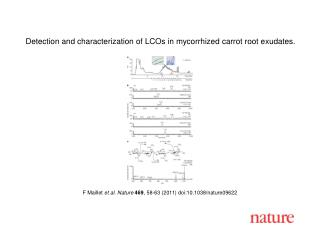 F Maillet  et al. Nature 469 , 58-63 (2011) doi:10.1038/nature09622