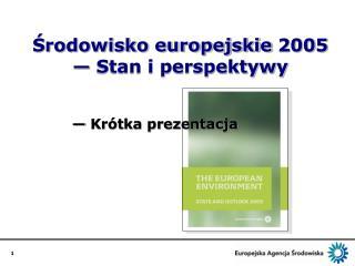 Środowisko europejskie  2005  —  Stan i perspektywy