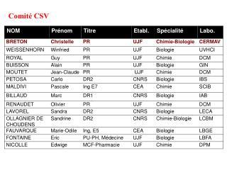 Comité CSV