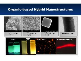 Organic-based Hybrid Nanostructures