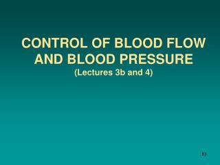Control of Blood Flow and Blood Pressure ( Lectures 3b and 4)