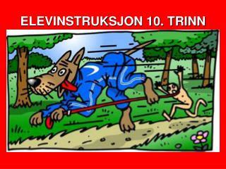 ELEVINSTRUKSJON 10. TRINN